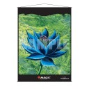 Poster Wall Scroll Black Lotus